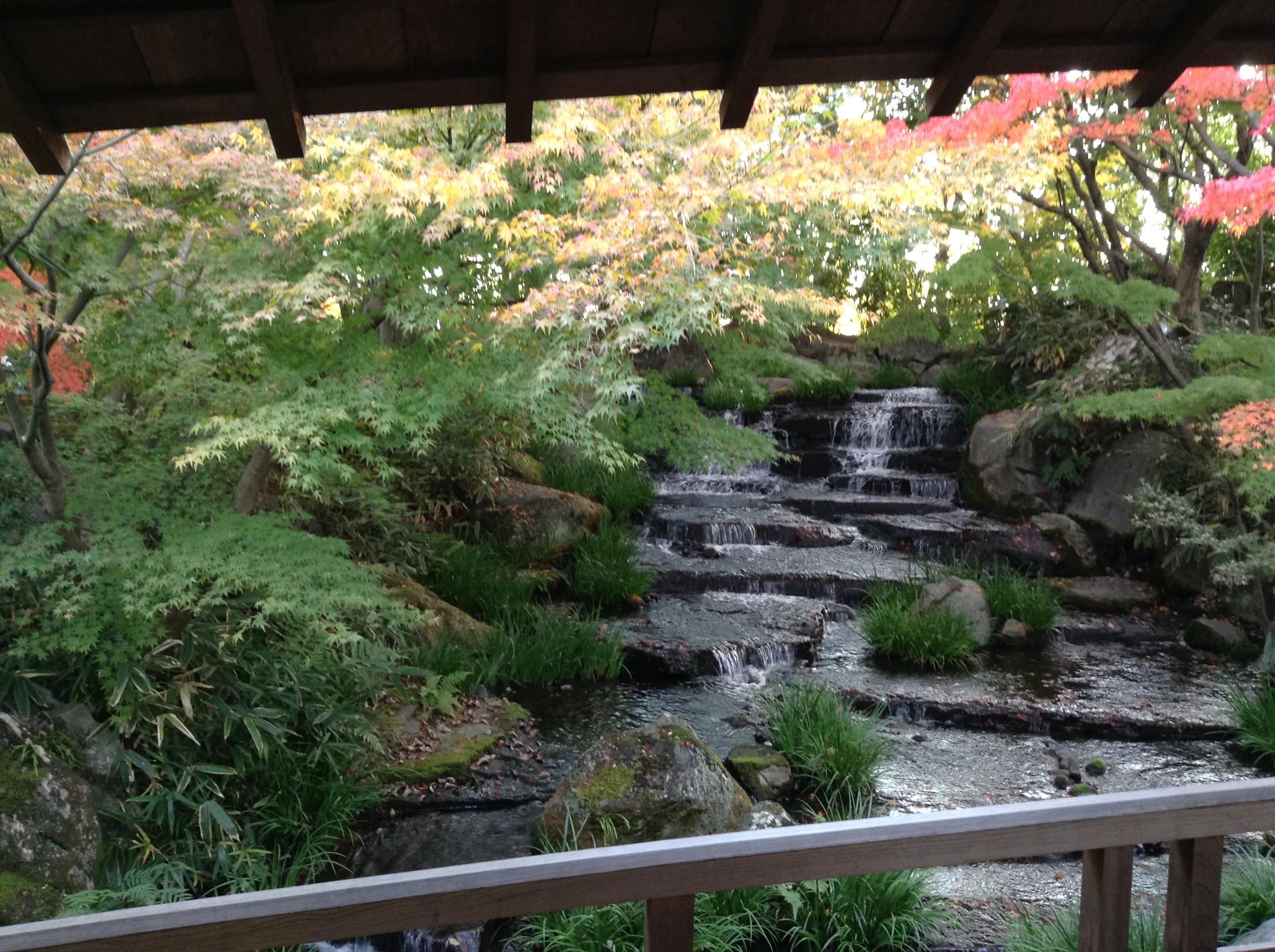 Jardin japonais en pente dans un jardin un parterre a t - Parterre jardin japonais ...